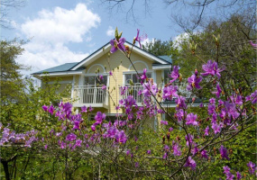 Nagano-ken, Japan, ,Villa,For Sale,Nagano-ken, Japan,11026