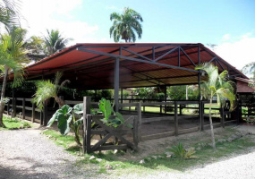 Cabarete, Dominican Rep, ,Villa,For Sale,Cabarete, Dominican Rep,17079